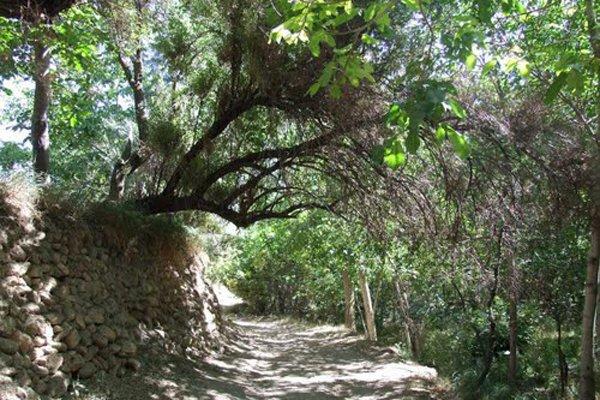2292533 «گردشگری روستایی» روزنهای برای رونق روستاها