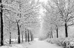 نکات لازم برای سفرهای زمستانی