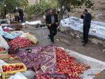 جشن انار؛ مراسمی برای همدلی در روستای نوده
