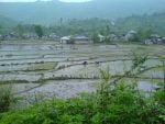 روستای سیاه منسه