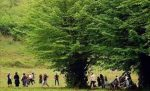همکاری «جایکا» در راستای اجرای طرح طبیعتگردی در گیلان