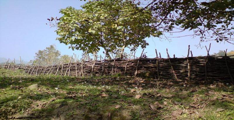 روستای دیگاه