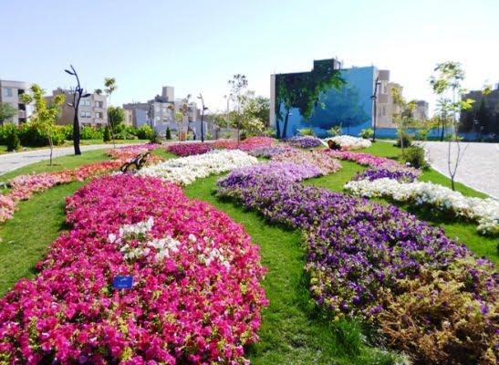416 باغ گلهای مشهد