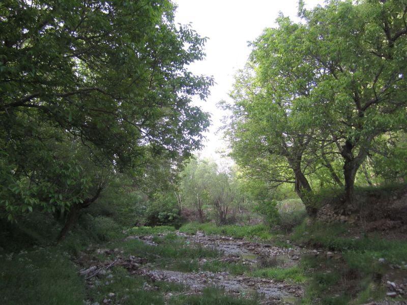 روستای کهنمو