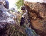 چشمه گرماب