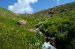 دره گلستان