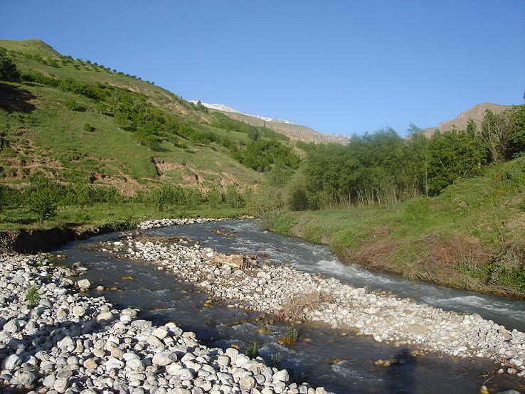 روستای ونايی