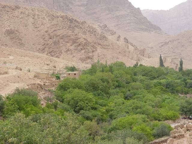 روستای شادکام بافق