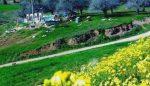 روستای منامن