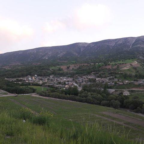 روستای شروینه