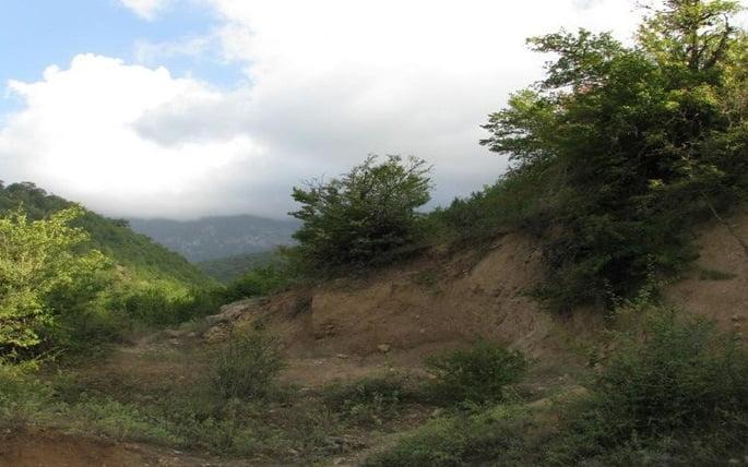 روستای تیلک