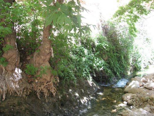 روستای کاوند درویشان