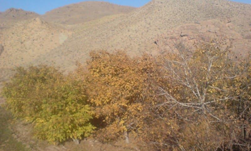 روستای خوشاب