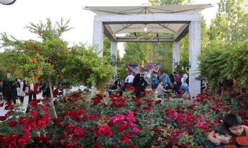 باغ هنر شیراز