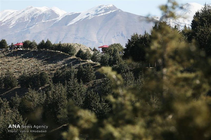 پارک جنگلی تلو تهران