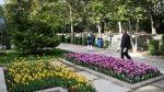 بوستان بیست و دوم بهمن تهران