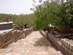 روستای حوری آباد