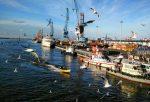 شبکه گردشگری دریایی در بنادر گیلان راه اندازی می شود