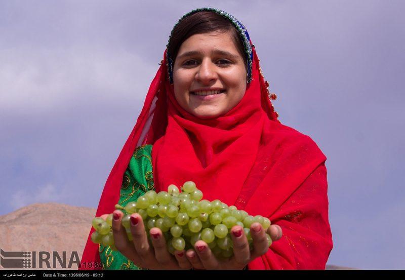 جشنواره انگور در شهر ناغان استان چهار محال و بختیاری
