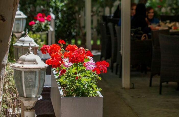 کافه ریبار تهران