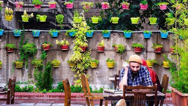 رد کافه تهران