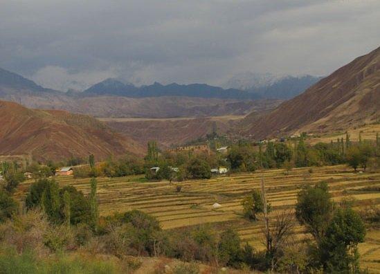 روستای شهرک