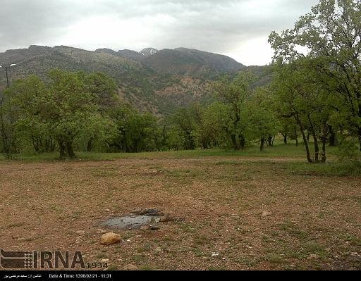 سرمایه گذاری 2هزار میلیارد ریالی وزارت نفت در پارک جنگلی یاسوج