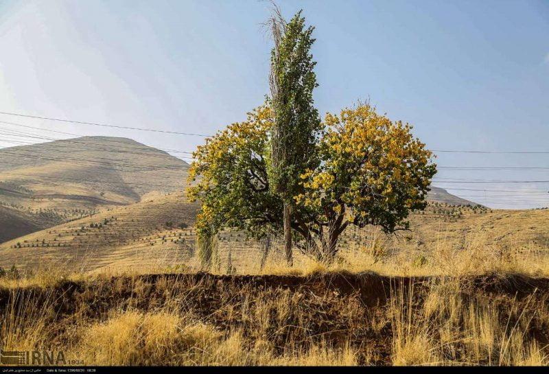 جاذبه های گردشگری پاییزی کردستان
