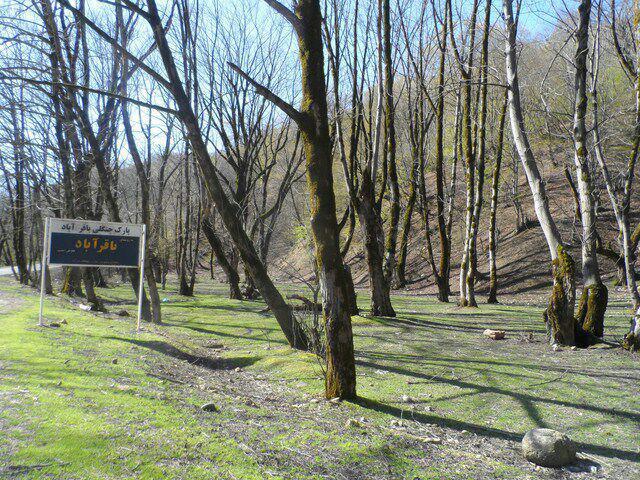 پارک جنگلی باقرآباد مینودشت