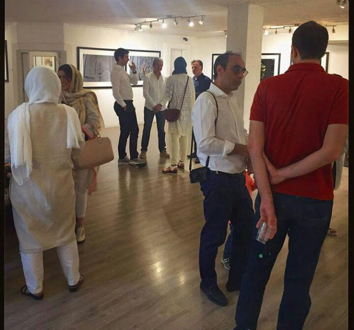 گالری هنر سیحون تهران