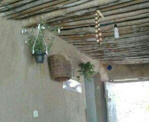 اقامتگاه بومگردی آرتینا اسدآباد