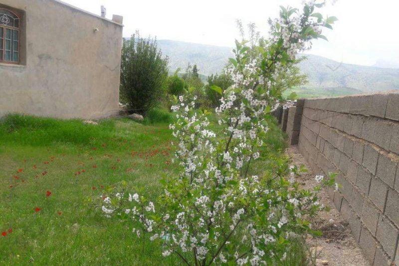 اقامتگاه بومگردی شریف شباب