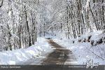 گردشگری زمستانی در مازندران