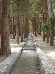 پارک شهدای محراب شاهرود