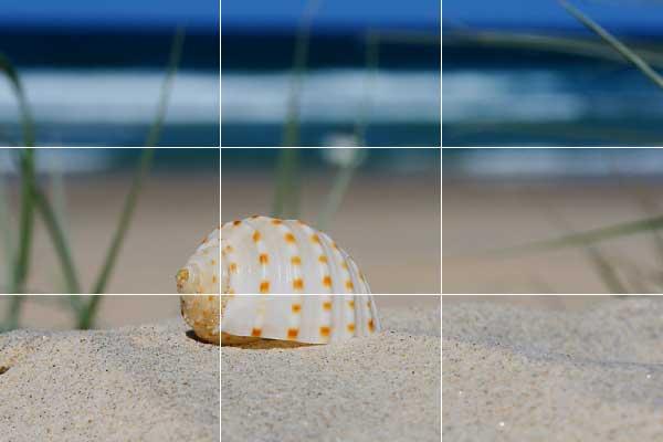 در تعطیلات چگونه عکس بگیریم؟