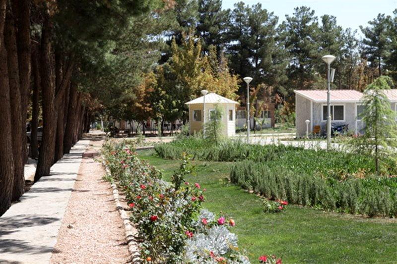 پارک جنگلی طرق