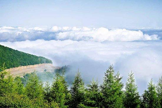 جنگل ابر جاهای دیدنی سمنان در بهار