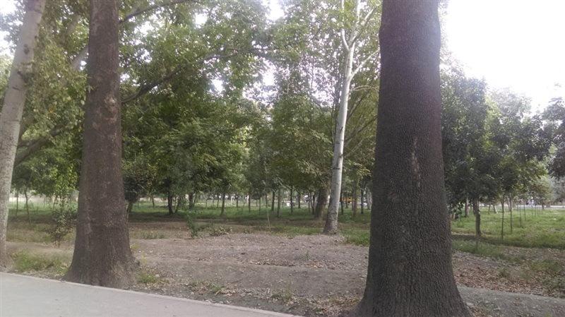 پارک خانواده کرج