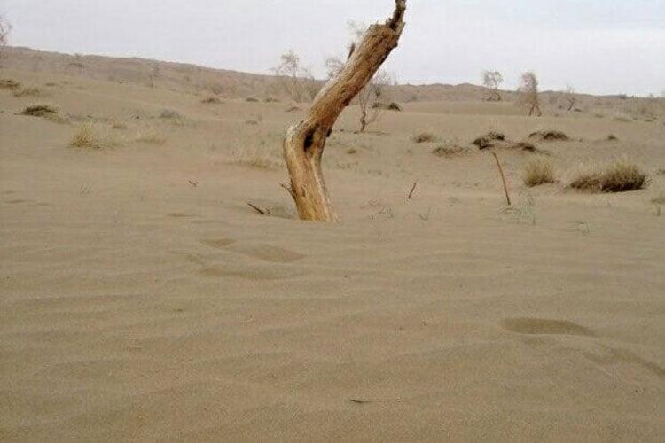 کویر حلوان از جاهای دیدنی بیرجند جاهای دیدنی بیرجند در بهار (40 جاذبه گردشگری)