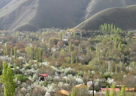 روستای خور ساوجبلاغ