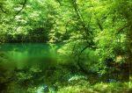 دریاچه فراخین