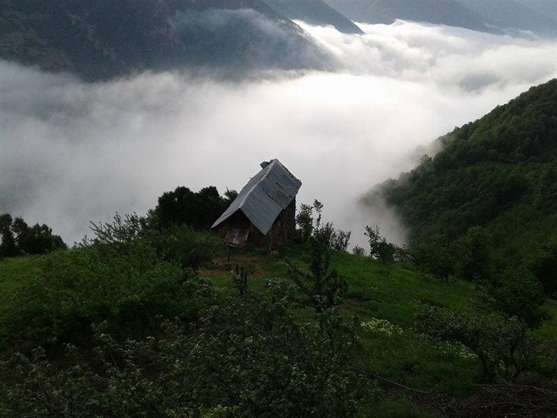 روستای تلیکان