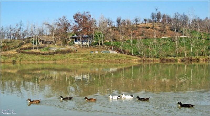 روستای خلیلان شفت