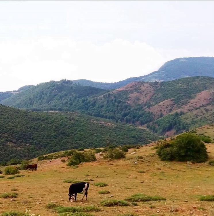 روستای سنگرج