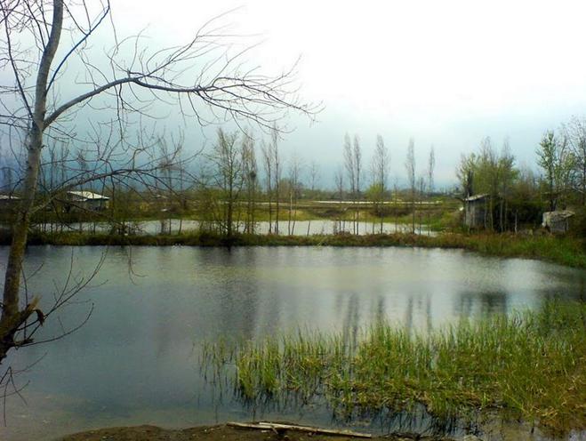روستای شیرمحله رودسر