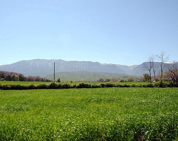 روستای یالو