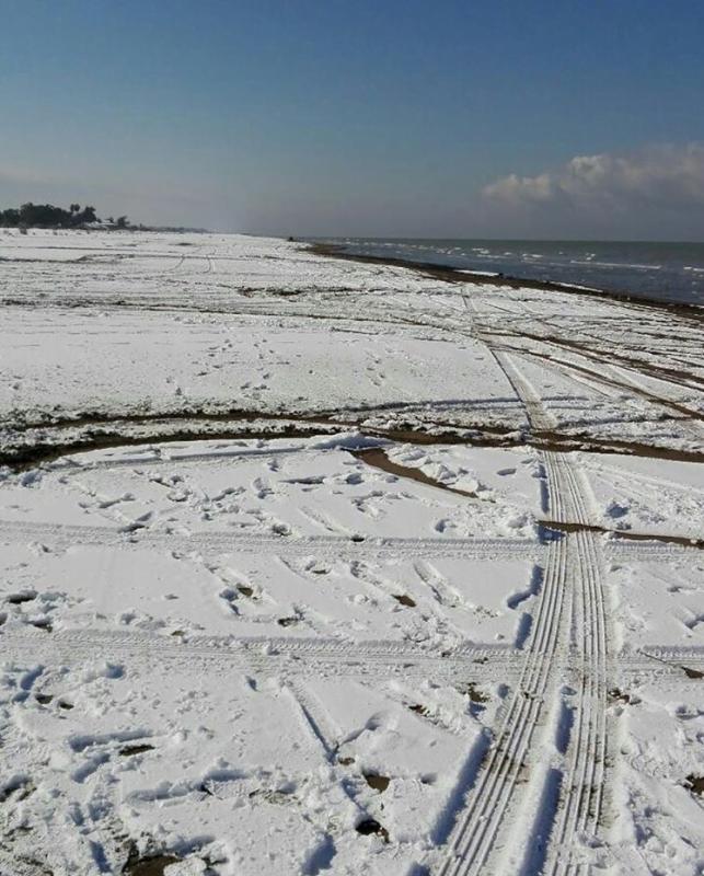 ساحل گهرباران