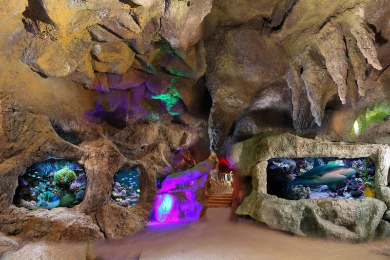 غار آکواریوم گنجنامه