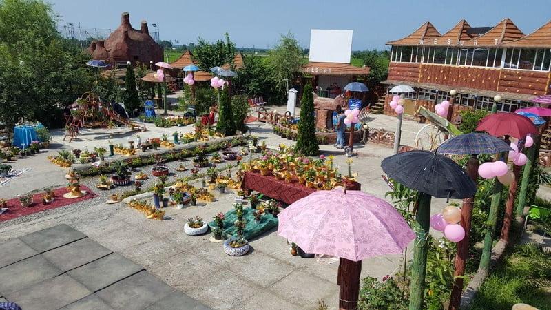 جشنواره گل و گیاه در پره سر برگزار شد