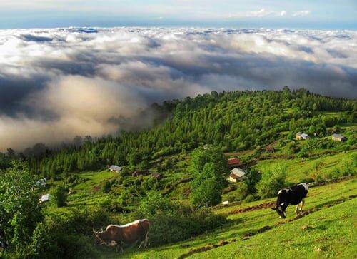 فیلبند، سفر به سرزمين ابرها در تابستان